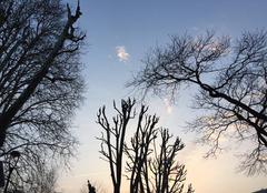 Ciel Romans-sur-Isere 26100 Ciel poudré au couchant