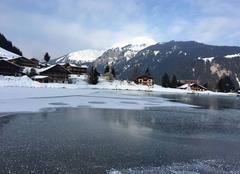 Froid Chatel 74390 Lac de vonne