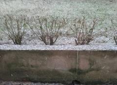 Neige Chartres 28000 Il neige à Chartres