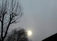 Brouillard Caylus 82160 Soleil dans  le brouillard du  matin