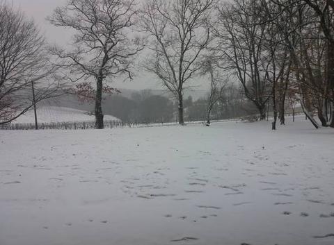 Neige dans le Gers