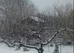 Neige Ledenon 30210 La neige