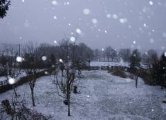 Neige Arleuf 58430 17h retour en noir et blanc