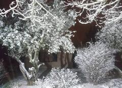 Neige Saint-Ambroix 30500 Soir