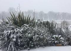 Neige Clermont 40180 Neige sur les landes