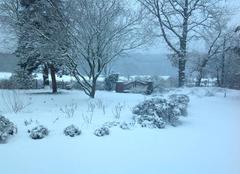 Neige Sulignat 01400 Sulignat dans l'ouest sous la neige