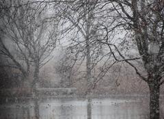 Neige Château-Arnoux-Saint-Auban 04160 Il neige, il neige