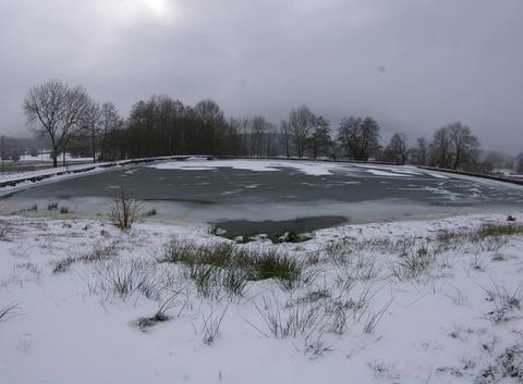 Graphisme éphémère  du vent et du froid sur l'étang