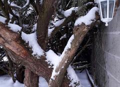 Neige Vallan 89580 L hiver se réveille