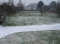 Neige Trelevern 22660 Sous la neige