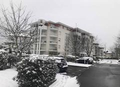 Neige Pau 64000 PAU sous la neige