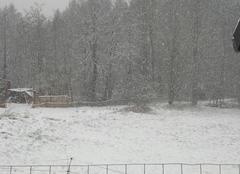 Neige Urmatt 67280 II neige