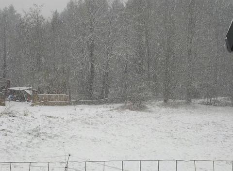 II neige