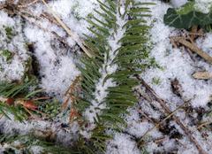 Neige Wingles 62410 Faibles chutes de neige