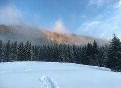 Neige Mijoux 01410 Fin de chute de neige Mijoux