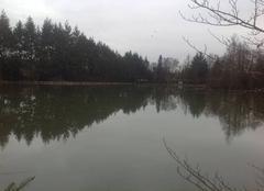 Pluie Bonsmoulins 61380 Dégel sur l'étang