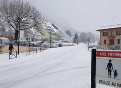 Neige Saint-Jean-d'Arvey 73230 Petite averse de neige