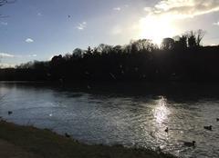 Ciel Bourg-de-Peage 26300 L´Isère sauvage sous le soleil ce matin
