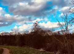 Ciel Bretteville-sur-Odon 14760  Promenade Sentier  bord de l?Odon. par JB.
