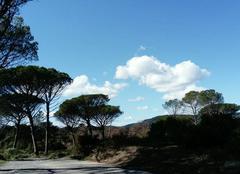 Ciel La Motte 83920 Soleil en Provence avec petit vent