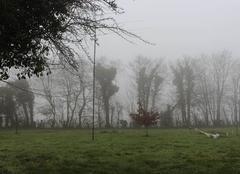 Nuages Bonnemaison 14260 Nuage bas? Brouillard? Va savoir...