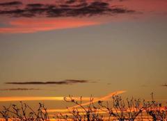 Ciel Cournon-d'Auvergne 63800 Sunset