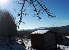 Neige Auxelles-Haut 90200 Le soleil est de retour ce matin