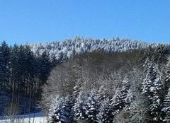 Neige Guéret 23000 Forêt givrée
