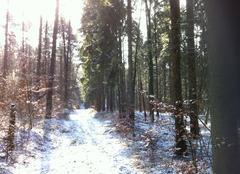 Neige Cumieres-le-Mort-Homme 55100 Belle neige