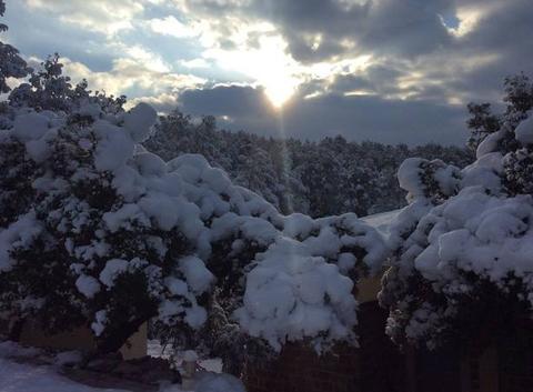 Sollies Toucas pendant les épisodes neigeux