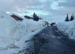 Neige L'Alpe-d'Huez 38750 Neige