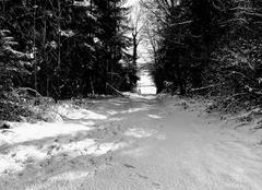 Neige Saint-Aquilin-de-Corbion 61380 Neige et soleil Soligny La Trappe