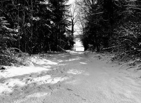 Neige et soleil Soligny La Trappe
