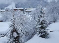 Neige Pralognan-la-Vanoise 73710 Jolie sous la neige