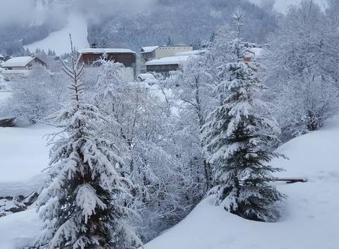 Jolie sous la neige