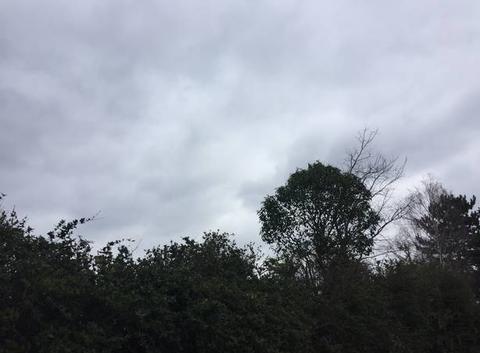 Ciel de pluie en ce samedi  ☔️☔️