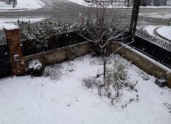 Neige Saint-Leu-la-Foret 95320 Neige de mars à Saint Leu