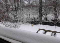 Neige Guebwiller 68500 Neige en plaine d'Alsace