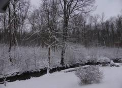 Neige Gerstheim 67150 La neige que l'on n'attendait plus !