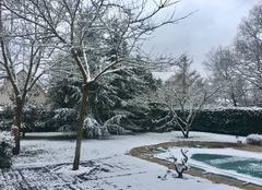 Neige Barbizon 77630 Le printemps se fait attendre??????