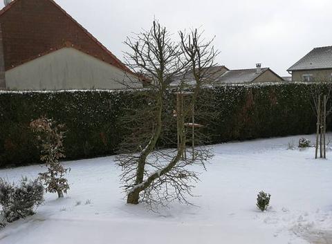 Neige tardive en Moselle