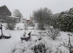 Neige Morancourt 52110 C'est bientôt le printemps..