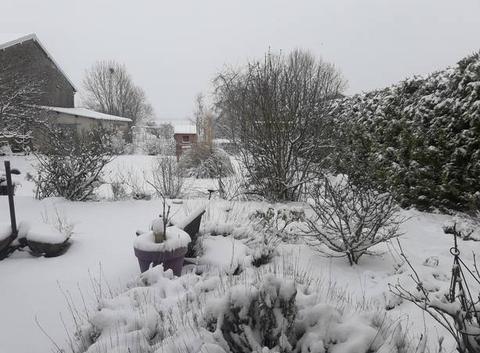 C'est bientôt le printemps..