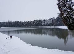 Neige Ungersheim 68190 Neige a l étang