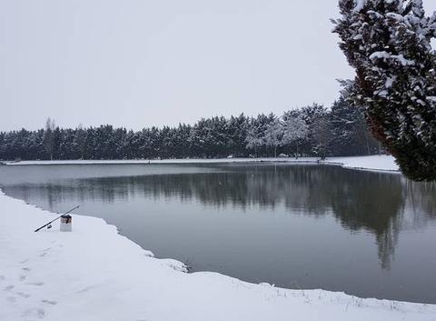 Neige a l étang