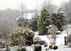 Neige Plouguin 29830 Grosse neige à plouguin