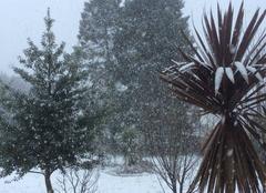 Neige Plouedern 29800 Il neige sur Landerneau