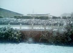 Neige Plourin 29830 Retour des gros flocons