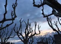 Ciel Romans-sur-Isere 26100 Crépuscule sur ciel de neige au couchant