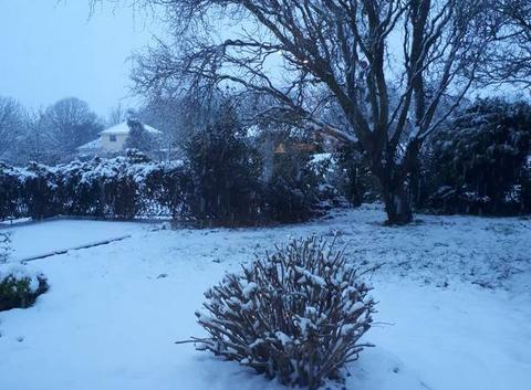 Il neige encore!
